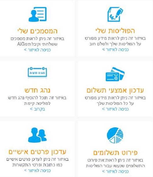 שירותי ביטוח באינטרנט באתר AIG