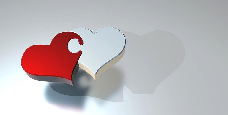 לב - ביטוח השתלות איברים