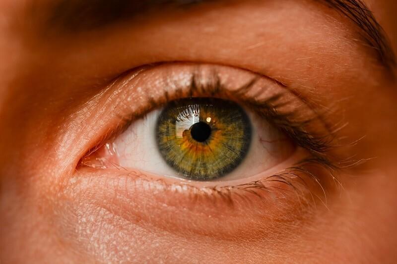 עין – עייפות בנהיגה